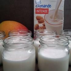 panna-cottalait-amande-mangue