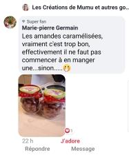 amandes caramélisées Marie Pierre GERMAIN sur FB les créations 2